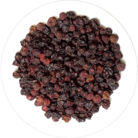 Schizandra Berry Image