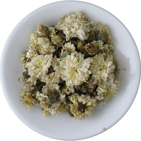 Royal Chrysanthemum Flower Image